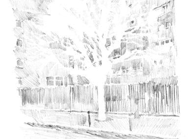 un arbre entier